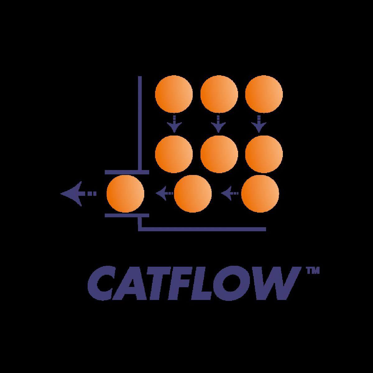 CatflowTM